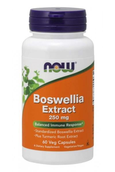 Boswellia Extract (Экстракт Босвелии) 250 mg от NOW Foods (60 caps)
