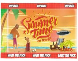 Пробник жиросжигателя Summer Time (2 caps)